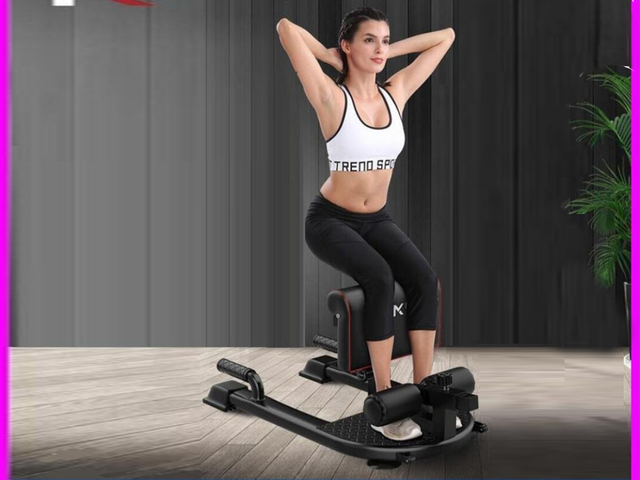 Sissy Squat Machine, Great Quad Hamstring Home Training Machine